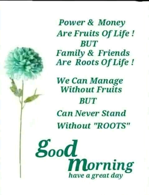 Family And Friends Are Roots Of Life Good Morning Messages Humor