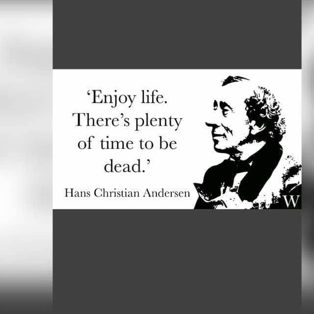 Enjoy Life Quotes Hans Christian Andersen Humor Jokes Memes