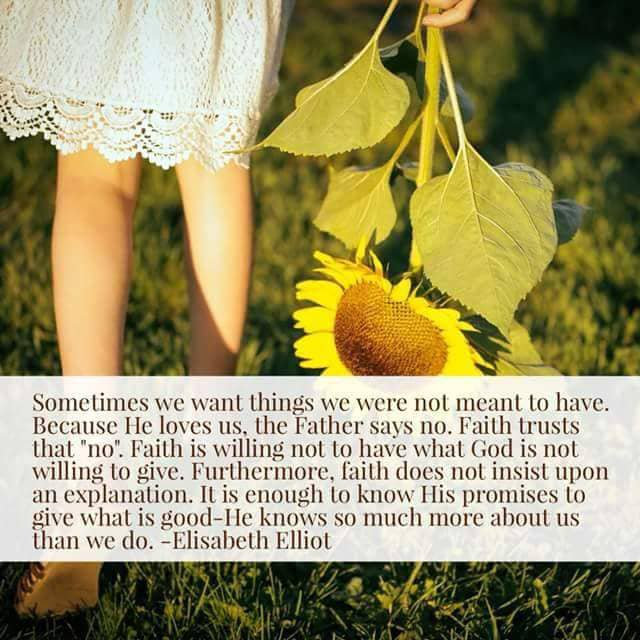 Quotes Sometimes We Want Things We Were Not Meant To Have